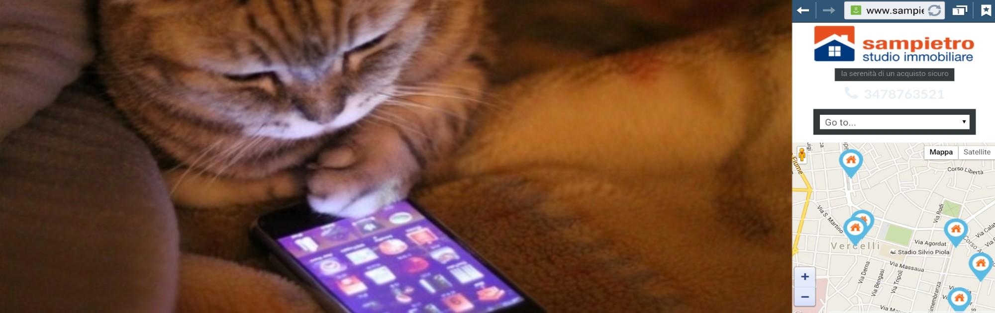Fai una ricerca con lo smartphone…..